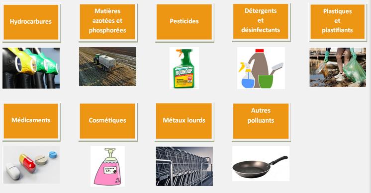 9 classes de polluants : hydrocarbures, matières azotées et phosphorées, pesticides, détergents et désinfectants, plastiques et plastifiants, médicaments, cosmétiques, métaux lourds et autres polluants
