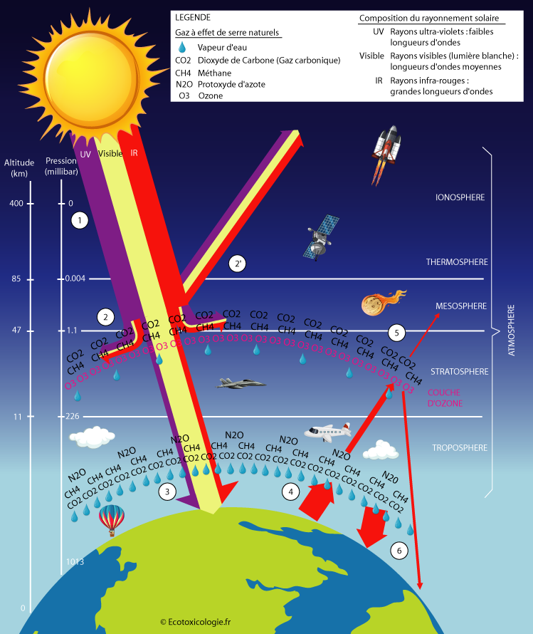 Schéma détaillé de l'effet de serre naturel