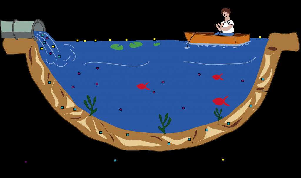 Notions de l'écotoxicologie - Schéma de la répartition de polluants solubles et non solubles dans le milieu aquatique