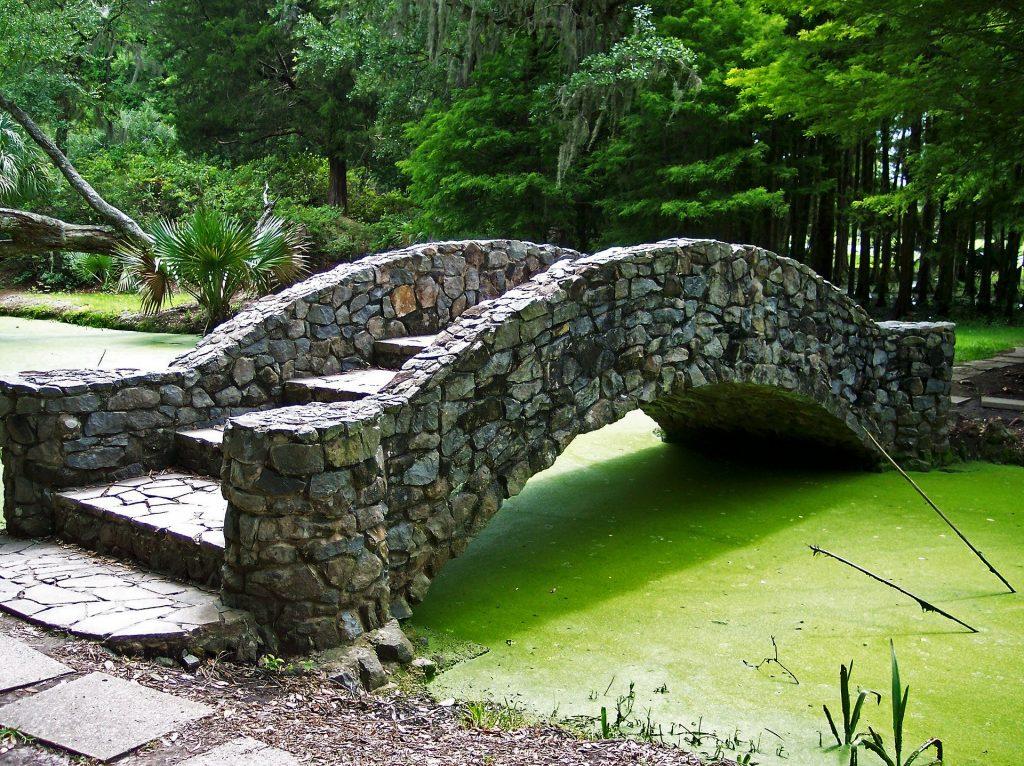 Prolifération d'algues vertes due à des rejets polluants : l'utrophisation