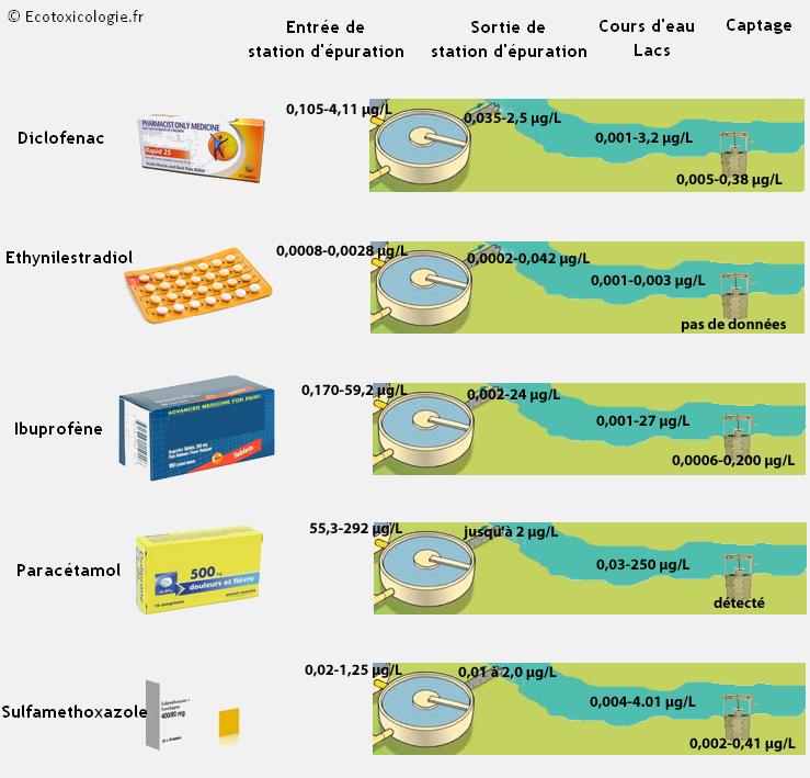 Des médicaments retrouvés à des faibles concentrations dans les milieux aquatiques : paracétamol, ibuprofène, diclofénac, éthynilestradiol, sulfaméthoxazole