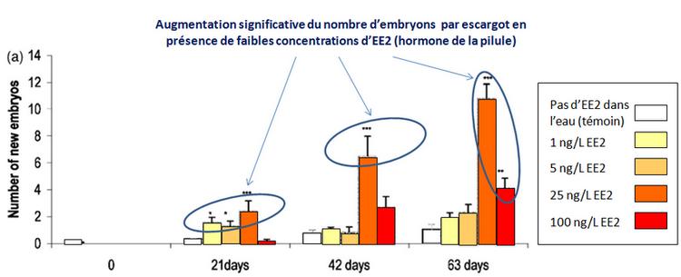 Graphique montrant que l'hormone de la pilule affecte la reproduction de l'escargot Potamopyrgus antipodarum à des doses infimes des doses infimes