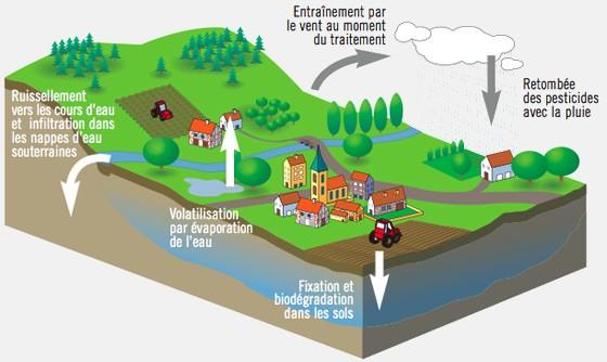 Schéma de la dissémination des pesticides dans l'environnement, en tant que polluants : volatilisation, dégradation, ruissellement, infiltration