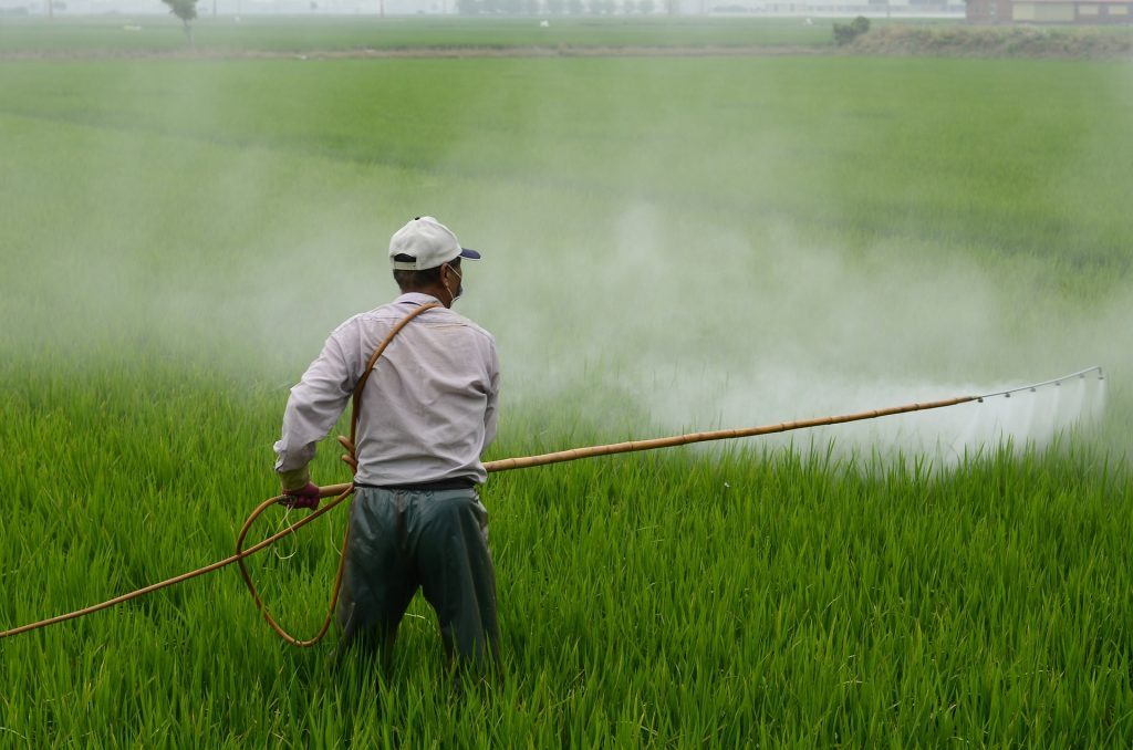 Épandage manuel d'herbicides