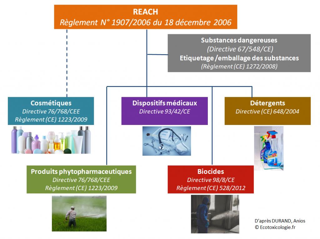 Logigramme de la réglementation européenne sur les susbtances chimiques