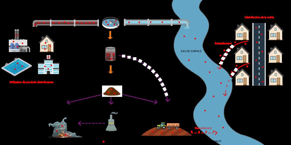 Rejets de désinfectants dans l'environnement