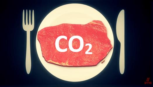 Réduire l'empreinte carbone de mon alimentation