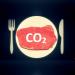 Empreinte carbone viande datagueule