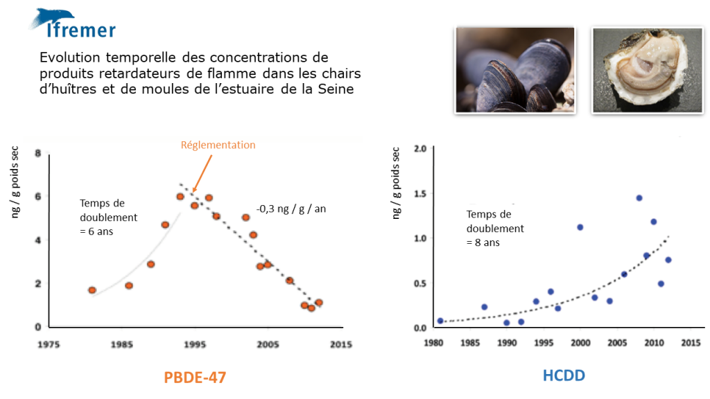 Evaluation temporelle des concentrations de produits retardateurs de flamme dans les chairs d'huîtres et de moules de l'estuaire de la Seine